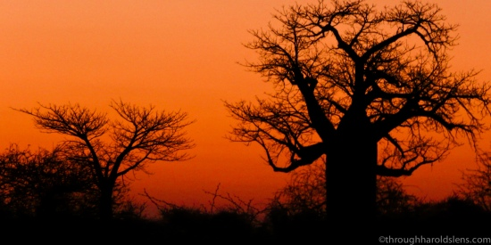 0808_OAT_Southern_Africa_403
